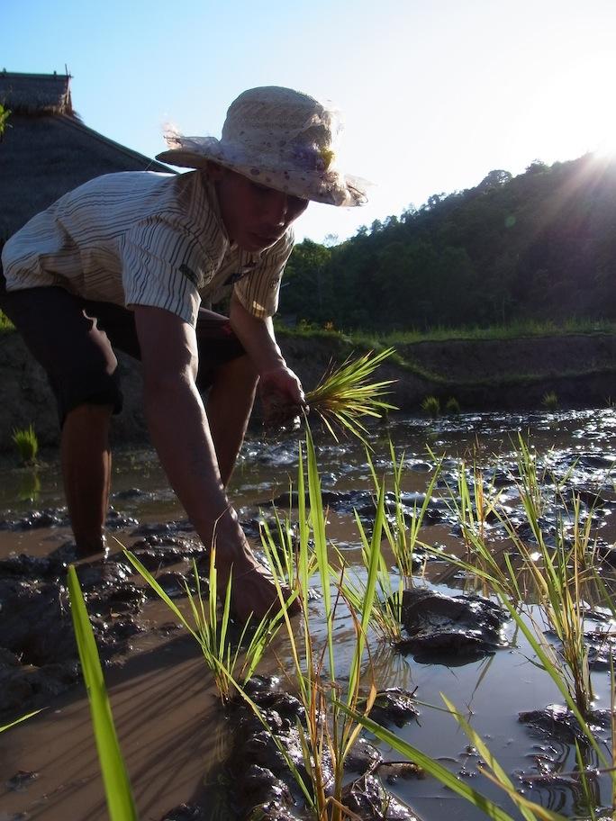 Kamu Lodge Explore Laos