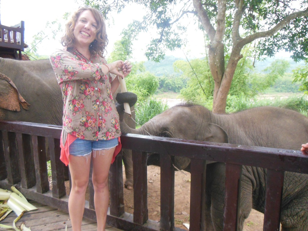 laos-tiger-trail-nam-ou-elephant-farm-1368