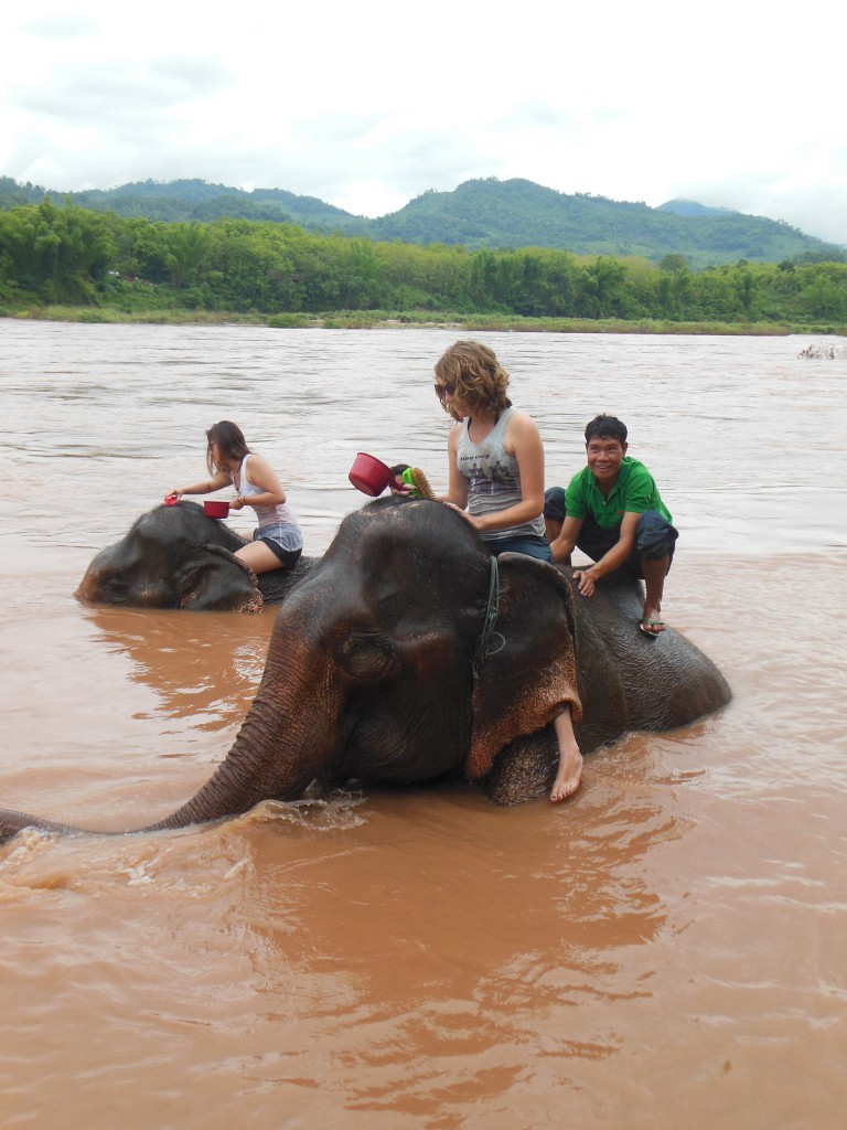 laos-tiger-trail-nam-ou-elephant-farm-1387
