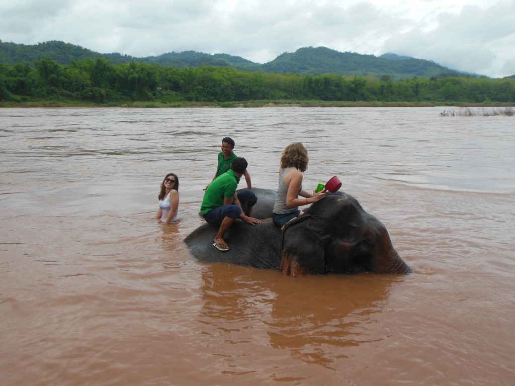 laos-tiger-trail-nam-ou-elephant-farm-1391