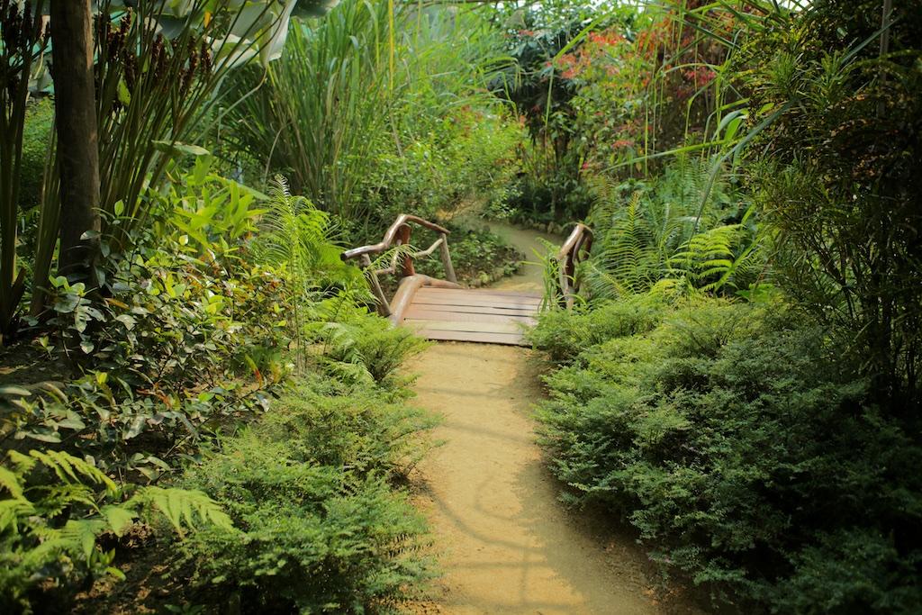 Laos-Luang-Prabang-Kuang-Si-Waterfall-Butterfly-Park-Tiger-Trail-Photo-By-Kyle-Wagner-CEB_7472