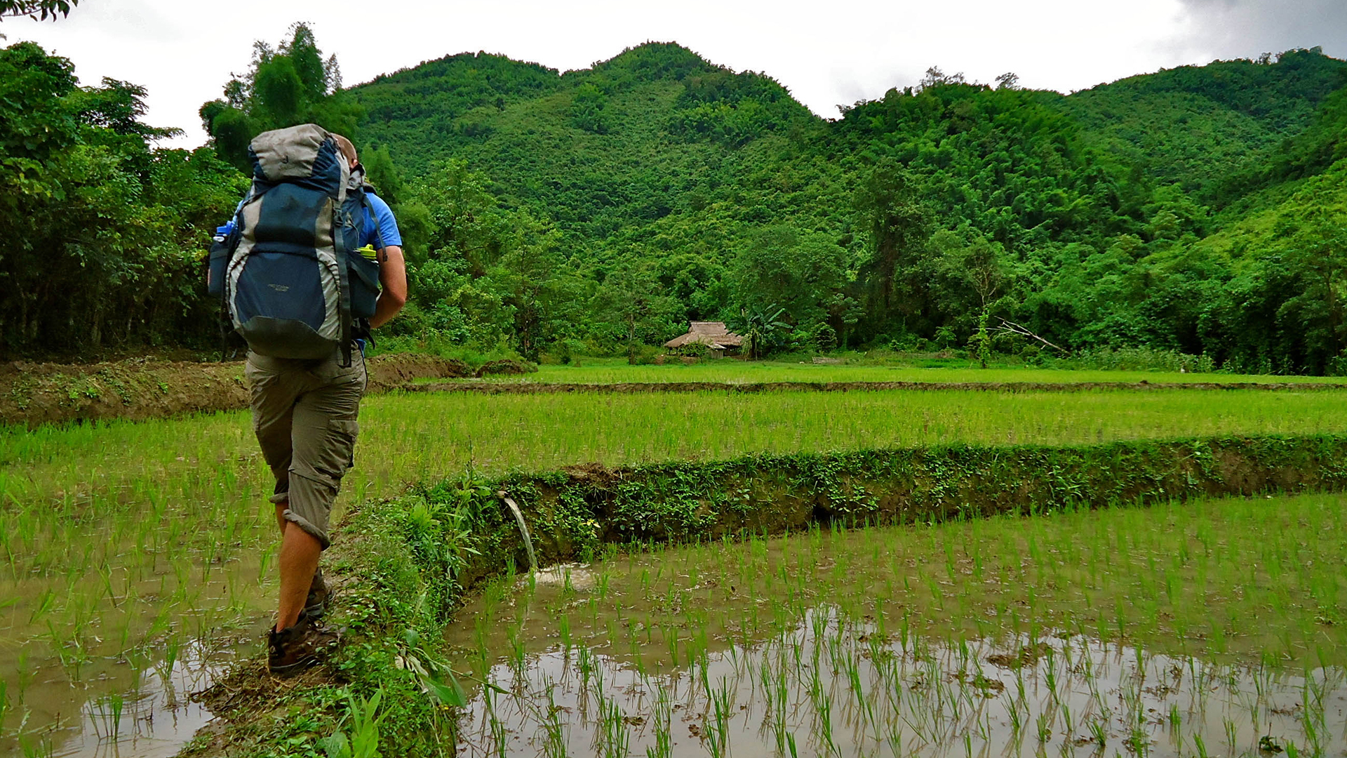 laos-trekking-rice-paddy-fair-trek-tiger-trail-photo-by-aaron-05