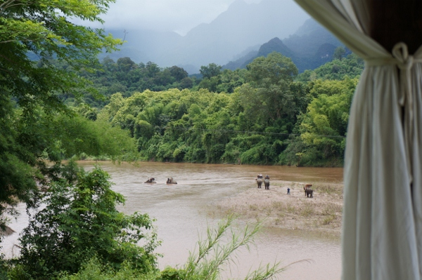 Elephant Village Mahout Program Tiger Trail