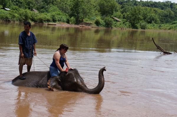 Elephant Tour Luang Prabang, Tiger Trail elephant village