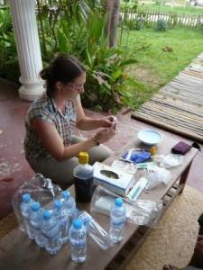 Helping Elephants in Laos