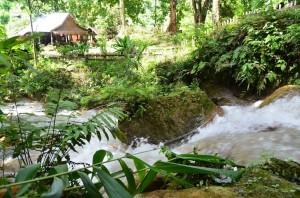 Explore waterfalls in Luang Prabang