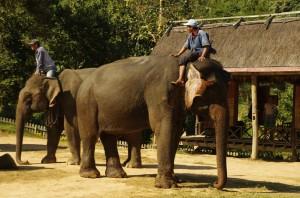 Laos, Luang Prabang, Ban Xang