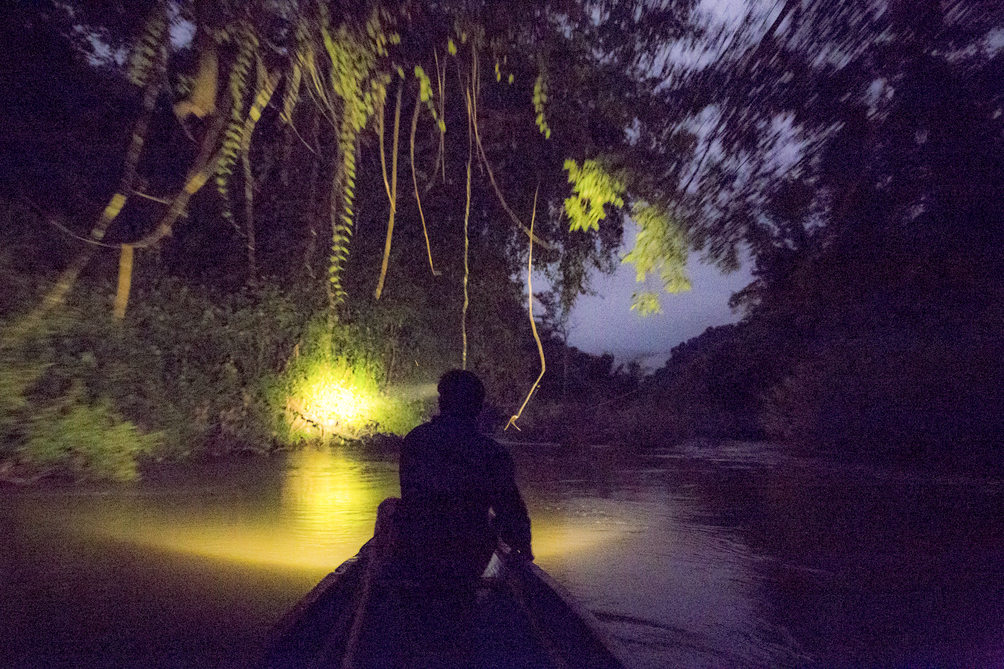 Cruise on Night Safari in Laos