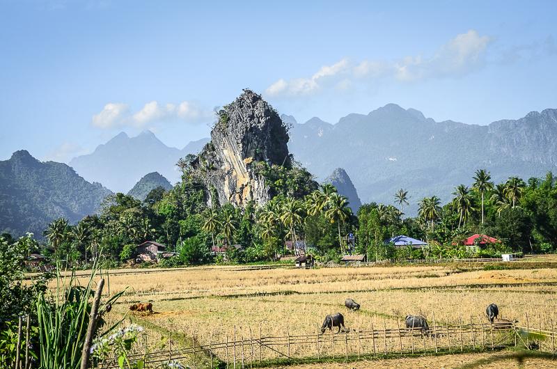 Laos Travel Tip Vang Vieng