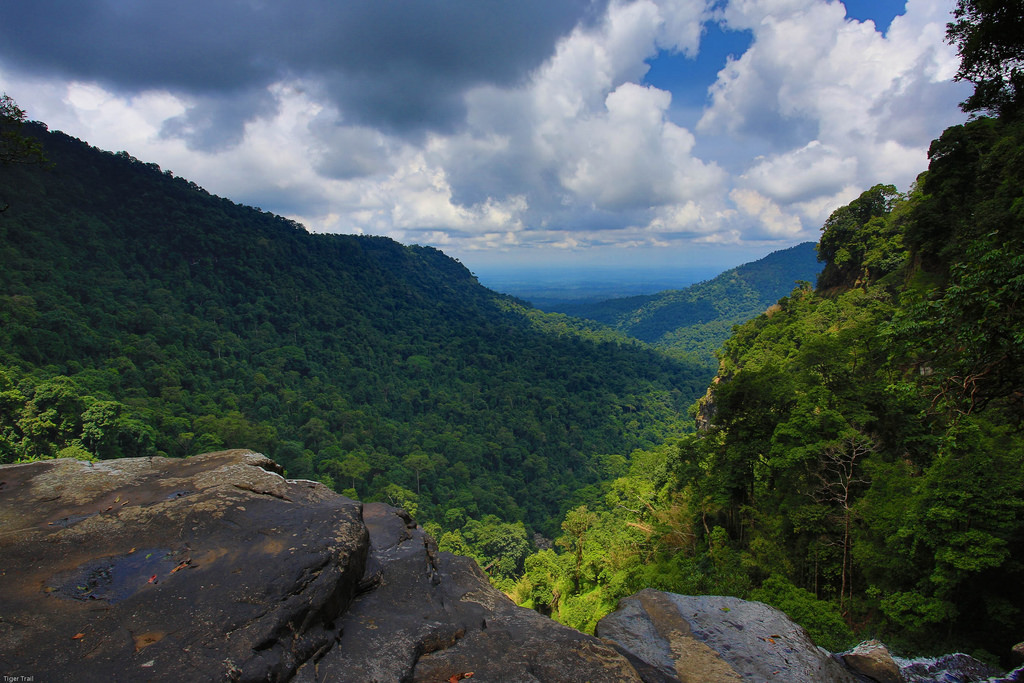 laos-bolaven-plateau-treetop-explorer-tiger-trail